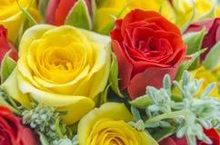 τα τριαντάφυλλα ανθοδεσμών β τονίζουν το ιώδες W Στοκ Εικόνα