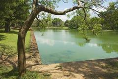 Τα τροπικά δέντρα στο αρχαίο άτομο έκαναν τη λίμνη στην ιερή πόλη Anuradhapura στη Σρι Λάνκα Στοκ φωτογραφία με δικαίωμα ελεύθερης χρήσης