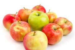 τα τρόφιμα ανασκόπησης μήλων απομόνωσαν το λευκό χρήσης υλικών Στοκ Εικόνα