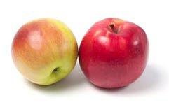 τα τρόφιμα ανασκόπησης μήλων απομόνωσαν το λευκό χρήσης υλικών Στοκ Εικόνες