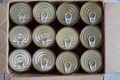 Τα τρόφιμα κασσίτερου μπορούν στο έγγραφο να εγκιβωτίσουν Στοκ φωτογραφίες με δικαίωμα ελεύθερης χρήσης