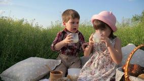 Τα υγιή τρόφιμα για το υγιές παιδί, παιδιά στο πικ-νίκ, οικογένεια στηρίζονται στη φύση, πόσιμο γάλα παιδιών, ευτυχής κατανάλωση  φιλμ μικρού μήκους