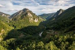 Τα υψηλά βουνά του Μαυροβουνίου καλύπτονται με το δάσος το φθινόπωρο Στοκ φωτογραφίες με δικαίωμα ελεύθερης χρήσης