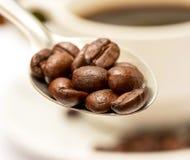 Τα φασόλια καφέ αντιπροσωπεύουν το ποτό καφέδων και που ψήνουν στοκ εικόνες