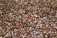 Τα φασόλια καφέ, υπόβαθρο σιταριών καφέ, κλείνουν επάνω την άποψη στοκ φωτογραφίες