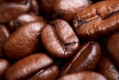 τα φασόλια κλείνουν το coffe &e στοκ φωτογραφία με δικαίωμα ελεύθερης χρήσης