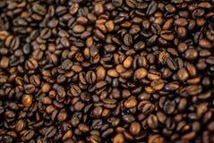 Τα φασόλια καφέ η περίληψη υποβάθρου Στοκ Εικόνες