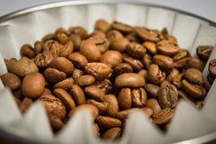 Τα φασόλια καφέ dripper παρασκευάζουν και άσπρο φίλτρο Στοκ φωτογραφία με δικαίωμα ελεύθερης χρήσης