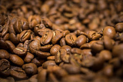 τα φασόλια κλείνουν τον καφέ επάνω Στοκ εικόνα με δικαίωμα ελεύθερης χρήσης