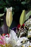 Τα φρέσκα ζωηρόχρωμα λουλούδια υποβάλλουν τα βάζα Στοκ φωτογραφία με δικαίωμα ελεύθερης χρήσης