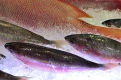 Τα φρέσκα θαλασσινά εισάγονται σε θαλασσινά παρουσιάζουν στο Βιετνάμ Στοκ εικόνα με δικαίωμα ελεύθερης χρήσης
