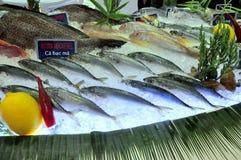 Τα φρέσκα θαλασσινά εισάγονται σε θαλασσινά παρουσιάζουν στο Βιετνάμ Στοκ Φωτογραφίες