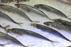 Τα φρέσκα θαλασσινά εισάγονται σε θαλασσινά παρουσιάζουν στο Βιετνάμ Στοκ φωτογραφία με δικαίωμα ελεύθερης χρήσης