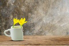 Τα φρέσκα κίτρινα λουλούδια στο άσπρο φλυτζάνι με την καρδιά διαμόρφωσαν τον κάτοχο ξύλινο tabletop grunge στο εκλεκτής ποιότητας Στοκ Εικόνες
