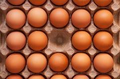Τα φρέσκα καφετιά αυγά κοτόπουλου βρίσκονται σε έναν ειδικό δίσκο χαρτονιού Στοκ Εικόνα