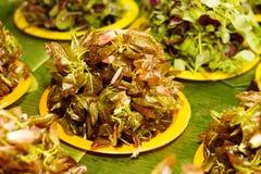 Τα φρέσκα λαχανικά στην αγορά χρονοτριβούν για την πώληση στην τοπική αγορά Chiang Mai, Ταϊλάνδη, Στοκ Εικόνα