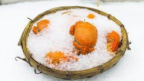 Τα φρέσκα πορτοκαλιά καβούρια στο καλάθι πάγου Στοκ Φωτογραφίες