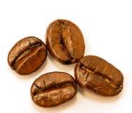 Τα φρέσκα φασόλια καφέ παρουσιάζουν ζεστό ποτό και καφετής στοκ φωτογραφία με δικαίωμα ελεύθερης χρήσης