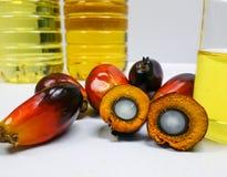 Τα φρούτα και το φοινικέλαιο φοινικών, ένα φρούτα κόβονται για να παρουσιάσουν πυρήνα του Στοκ Φωτογραφία