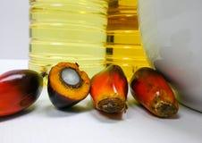 Τα φρούτα και το φοινικέλαιο φοινικών, ένα φρούτα κόβονται για να παρουσιάσουν πυρήνα του Στοκ Φωτογραφίες