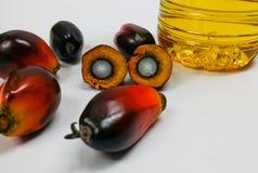 Τα φρούτα και το φοινικέλαιο φοινικών, ένα φρούτα κόβονται παρουσιάζουν πυρήνα Στοκ εικόνα με δικαίωμα ελεύθερης χρήσης