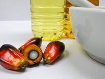 Τα φρούτα και το φοινικέλαιο φοινικών, ένα φρούτα κόβονται παρουσιάζουν πυρήνα Στοκ Εικόνες