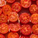 Τα φρούτα ντοματών Στοκ φωτογραφία με δικαίωμα ελεύθερης χρήσης