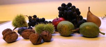 Τα φρούτα σταφυλιών αχλαδιών μήλων κάστανων δαμάσκηνων καρυδιών Στοκ Εικόνες
