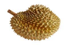 Τα φρούτα Durian απομονώνουν στο άσπρο υπόβαθρο προελάτε από την Ταϊλάνδη Στοκ Εικόνες