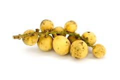 Τα φρούτα Longkong ή το parasiticum Lansium είναι τροπικά φρούτα Στοκ φωτογραφία με δικαίωμα ελεύθερης χρήσης