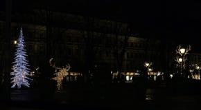 Τα φω'τα Χριστουγέννων του Ελσίνκι, Φινλανδία στοκ φωτογραφία με δικαίωμα ελεύθερης χρήσης