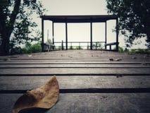 Τα φύλλα είναι στο ξύλινο πάτωμα, και οι πλευρές είναι δέντρα Στοκ Φωτογραφίες