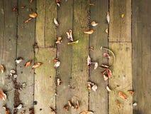 Τα φύλλα ξεραίνουν το ξύλινο υπόβαθρο πατωμάτων Στοκ εικόνες με δικαίωμα ελεύθερης χρήσης