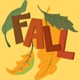 Τα φύλλα σφενδάμου στεφανιών πτώσης, σημύδα ή συλλέγουν τα μούρα του Rowan, βελανίδι Στοκ φωτογραφίες με δικαίωμα ελεύθερης χρήσης