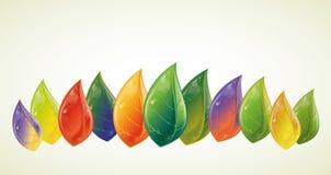 τα φύλλα φθινοπώρου που &tau διανυσματική απεικόνιση