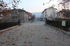Τα φύλλα φθινοπώρου πτώσης στην έξοδο του πάρκου σε Petrich στοκ εικόνες