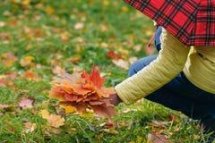 Τα φύλλα Malpe παραδίδουν μέσα το πάρκο πτώσης Στοκ Φωτογραφία