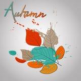 Τα φύλλα πτώσης με το χρώμα καταβρέχουν τη θερμή πτώση Στοκ εικόνες με δικαίωμα ελεύθερης χρήσης