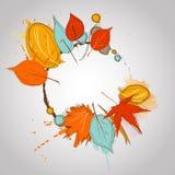 Τα φύλλα πτώσης με το χρώμα καταβρέχουν το θερμό χρώμα Στοκ Εικόνες