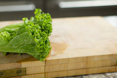 Τα φύλλα σαλάτας στον αγροτικό ξύλινο πίνακα κλείνουν επάνω με το copyspace Στοκ Εικόνες