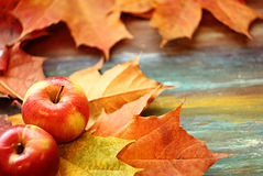 Apples&Leaves Στοκ Φωτογραφία