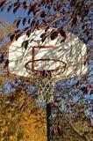 Τα φύλλα φθινοπώρου περιβάλλουν μια ράχη καλαθοσφαίρισης και riim Στοκ Φωτογραφίες