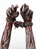 Τα χέρια δέσμευσαν, αιματηρά χέρια, λάσπη, σχοινί, σε ένα άσπρο υπόβαθρο, που απομονώθηκε, απάγοντας, zombie, δαίμονας Στοκ Φωτογραφία