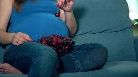 Τα χέρια αναμενουσών μητέρων χαϊδεύουν τεράστιο tummy και τρώνε το μούρο κερασιών απόθεμα βίντεο