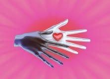 Τα χέρια γυναικών ` s είναι ανοικτά και δίνουν ή παίρνουν κάτι απομονωμένο καρδιά λευκό ντοματών μορφής Στοκ φωτογραφία με δικαίωμα ελεύθερης χρήσης