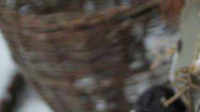 Τα χέρια ενός κοκκινομάλλους όμορφου κοριτσιού επάγωσαν σκληρά το χειμώνα έξω από την κινηματογράφηση σε πρώτο πλάνο cinderella φιλμ μικρού μήκους