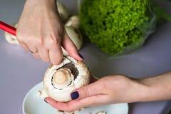 Τα χέρια καθαρίζουν τα μανιτάρια με το μαχαίρι στοκ εικόνα με δικαίωμα ελεύθερης χρήσης
