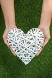 Τα χέρια κρατούν την άσπρη καρδιά φιαγμένη από κλάδους επάνω από τα gras brackground Στοκ Φωτογραφία