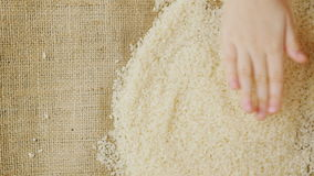 Τα χέρια παιδιών ` s κρατούν ένα σιτάρι του ρυζιού απόθεμα βίντεο