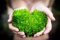 Τα χέρια που κρατούν την πράσινη διαμορφωμένη καρδιά φύση αγάπης δέντρων εκτός από τον κόσμο θεραπεύουν την παγκόσμια περιβαλλοντ στοκ φωτογραφία